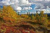 Alaska's Wilderness In Fall