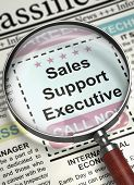Sales Support Executive. Newspaper With The Job Vacancy. Sales Support Executive - Close Up View Of  poster