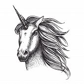 Unicorn Mystic Fairy Horse Head Sketch Icon Of With Magic Horn. Vector Unicorn Horse Muzzle With Wav poster