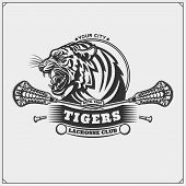 Lacrosse Club Emblem With Tiger Head. Vector Illustration. poster