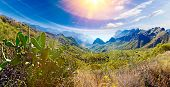 Scenery Valley In Spain.nature Landscape.travel Adventures And Outdoor .masca Valley.canary Island.t poster