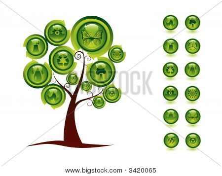 Ecology Tree And Buttons