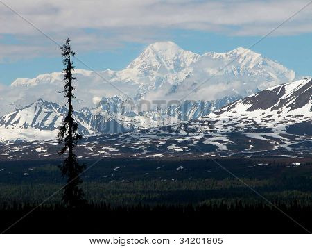 Roof Top of America - Denali