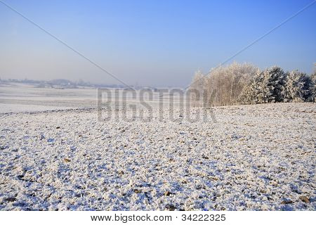 Frozen Fields And Meadows