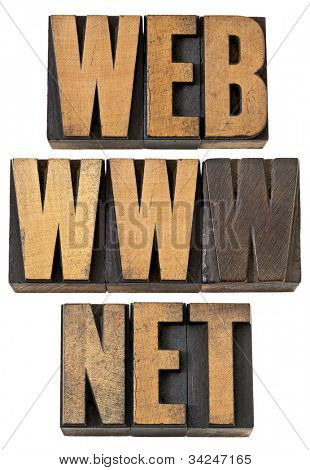 web, www, net  - internet concept - isolated text in vintage letterpress wood type