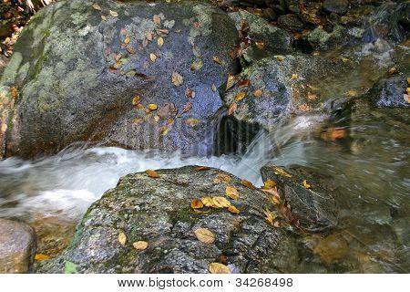 Mountain Runoff Stream