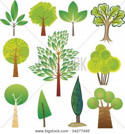 Muestras de árbol