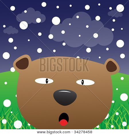 Bear and snow in the forest