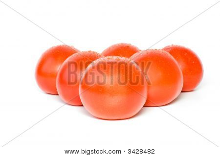 Six Tomatoes With Waterdrops