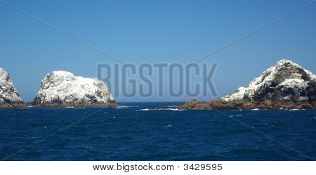 Farallon Islands California