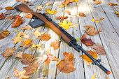 pic of sub-machine-gun  - Picture of a rifle surrounded by leaves - JPG
