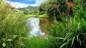 Archaeological Garden And View At The Pond At Archeological Complex Pumapungo In Cuenca City, Ecuado poster