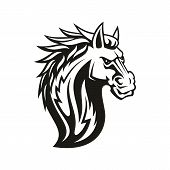 Horse Mustang Head Isolated. Vector Equestrian Sport Mascot, Tattoo Mare Or Stallion poster
