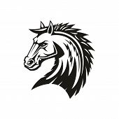 Arabian Rebellion Horse Isolated Head. Vector Equestrian Sport Symbol, Stallion Or Mane Profile poster