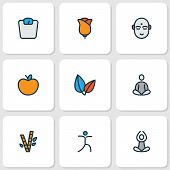 Yoga Icons Colored Line Set With Bamboo, Meditation, Flower And Other Meditation Elements. Isolated  poster