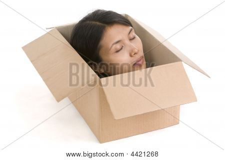 Head In Box Series - Dead