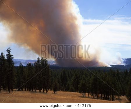 Incendio forestal (horizontal)