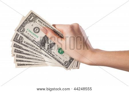 Female Hand Holding Money Dollars Isolated On White Background