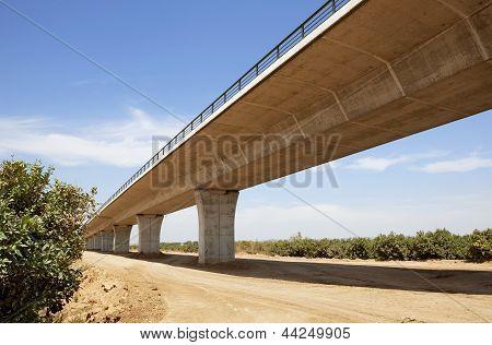High Speed Bridge On Fields Of Fruit Trees