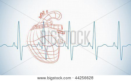 Drawn human heart and heart rate line on blue gird paper