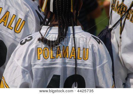 Polamalu Fans