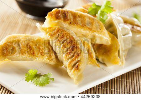 Homemade Asian Vegeterian Potstickers