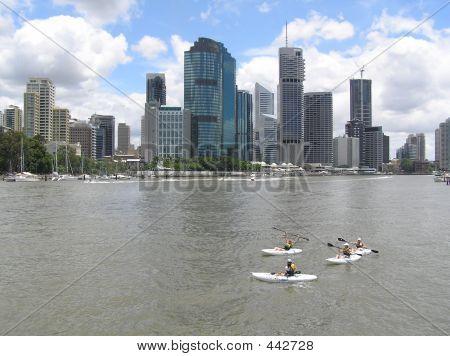 Brisbane River Life