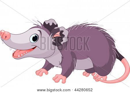 Illustration of cute cartoon opossum