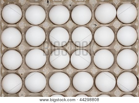 Two Dozen Eggs