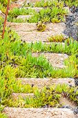 pic of nea  - Old ruined concrete stairs at the beach in Nea Moudania - JPG