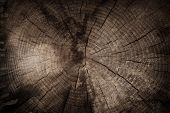 foto of clos  - Old circular wood texture and background clos - JPG