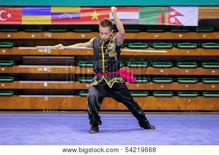 KUALA LUMPUR - NOV 03: Italy's Ascione Ulderico performs with a staff in the Men's 'Nangun' Event at the 12th World Wushu Championship on November 03, 2013 in Kuala Lumpur, Malaysia.