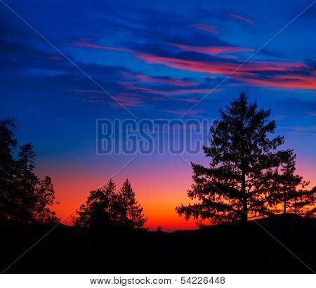 Sunset in Yosemite National Park with tree silhouettes at California USA