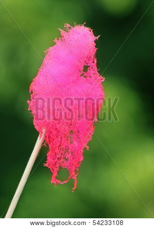 Cotton Candy On Stick