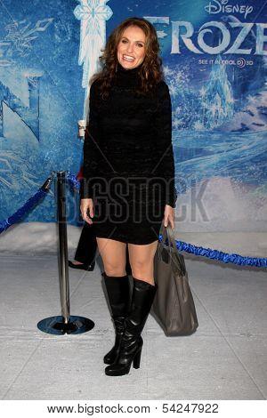 LOS ANGELES - NOV 19:  Amy Brenneman at the