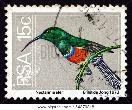 Postage Stamp South Africa 1974 Greater Double-collared Sunbird