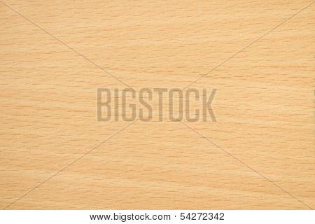 Beech Wooden Texture