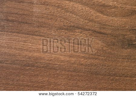 Pacific Walnut Tree Wooden Texture