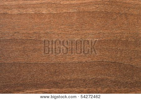 Aida Walnut Tree Wooden Texture