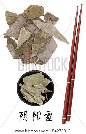Epimedium used in traditional chinese herbal medicine with mandarin title script translation and chopsticks. Yin yang huo.