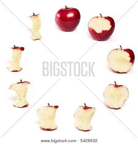 Apples Forming Circle