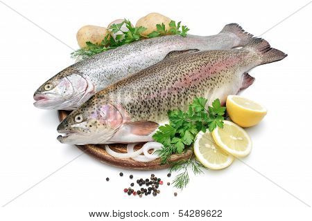 Rainbow Trout With Fresh Herbs