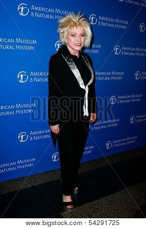 NEW YORK-NOV 21; Singer Debbie Harry attends the American Museum of Natural History's 2013 Museum Gala at American Museum of Natural History on November 21, 2013 in New York City.