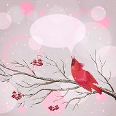 stock photo of rowan berry  - Vector snowy Christmas card with frozen Rowan tree branches berries singing red Waxwing bird snowflakes speech bubble on abstract bokeh background - JPG
