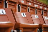 image of grandstand  - Chairs on the grandstand with the sorting - JPG