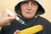 image of genetic engineering  - Genetically modified organism ill woman with GMO corn - JPG