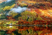 stock photo of plateau  - Autumn colours in Highlands - JPG