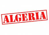 pic of algiers  - ALGERIA Rubber Stamp over a white background - JPG