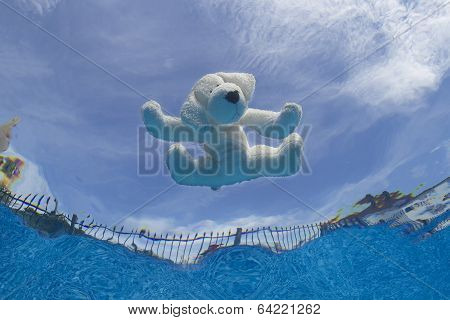 Drowning Pup