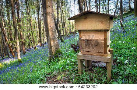 Woodland Beehive